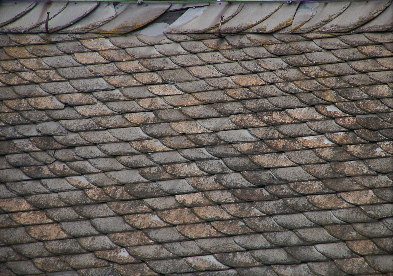 How Do You Know That You Have Damage On Your Roof